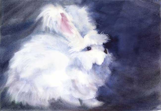 bunny_lg