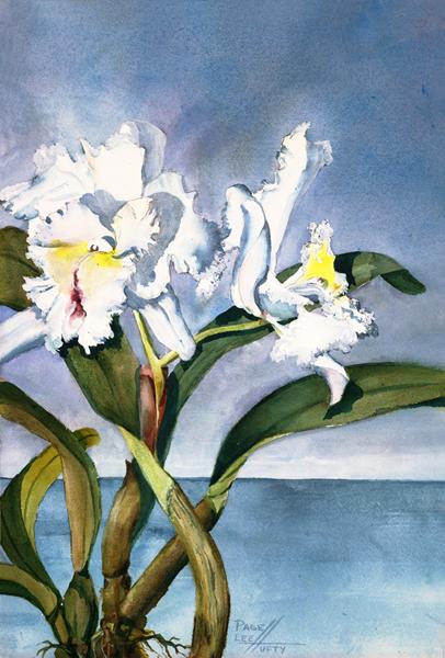 orchids_lg